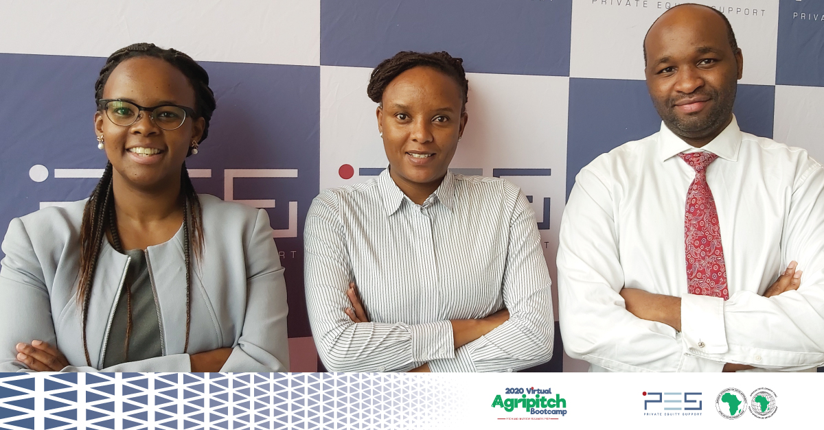 You are currently viewing Investor Readiness and Early Stage Financing – 2020 AFDB Agripitch Competition